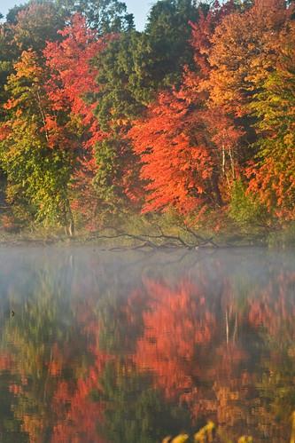 morning autumn trees lake color fall nature colors leaves fog wisconsin forest sunrise season landscape woods fallcolors calm hike