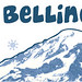 SW_Bellingham_Logo