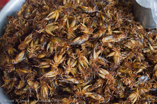 Fried Crickets, Skuon, Cambodia