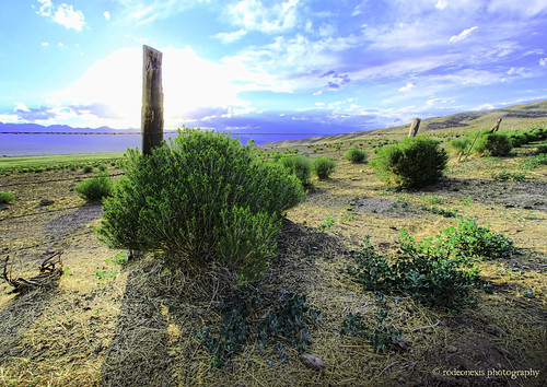 wideangle salida hdr greatsanddunes crestone desertplants westcliffe sangredecristo wetmountainvalley silvercliff humboldtpeak landscapeimages coloradophotography musicpass desertgrass ruggedpeaks shadowsinthedesert desertfence greengrassesincolorado southernmountainrange sanisabelwilderness mountainsandplainsinthewest