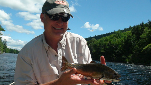 Kevin's Levitating Brook Trout