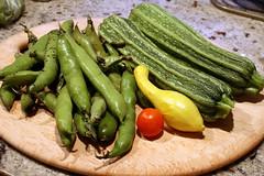 harvest 022