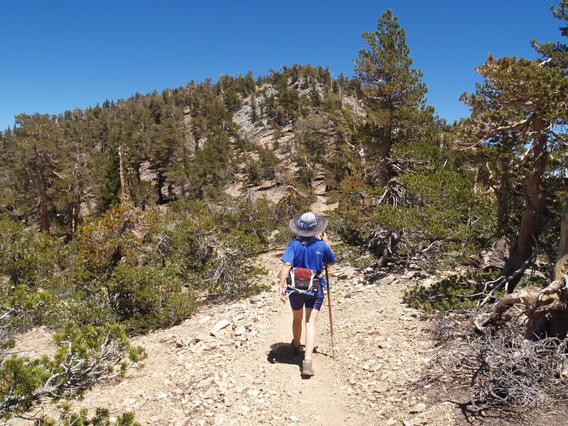 Hiking onward to San Bernardino Peak