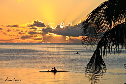 sunset sea sun golden tramonto mare sole moorea