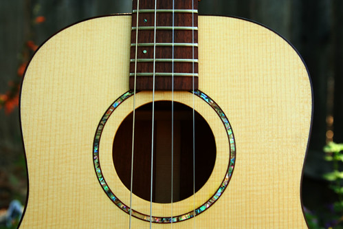 Dry Creek Guitar Baritone Ukulele by Laura O Photo