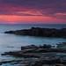 Sunset at Torekov V by Martin Hedlund