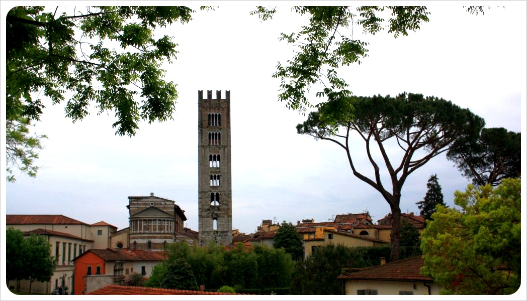 lucca tower & trees