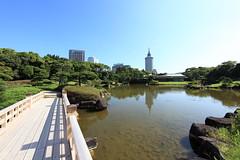 Japanese style garden / 日本庭園(にほんていえん)