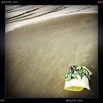 Pumpuru pludmale
