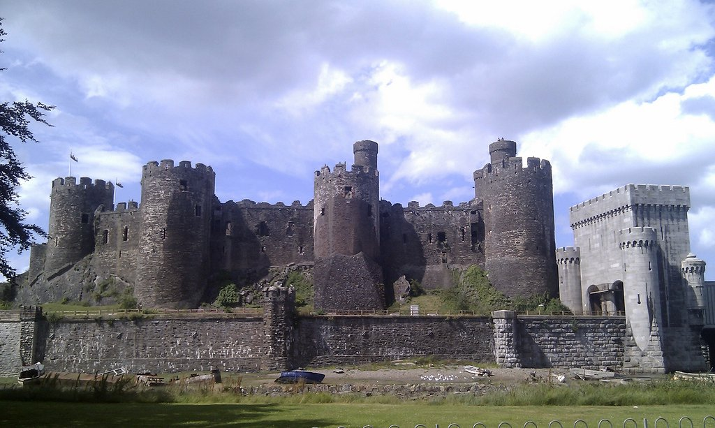 conwy catle