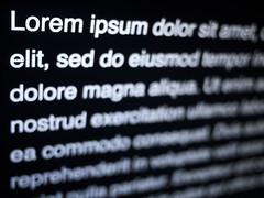 lorem ipsum photo
