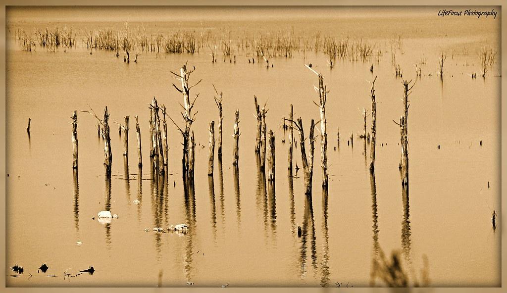 dam reflections 1