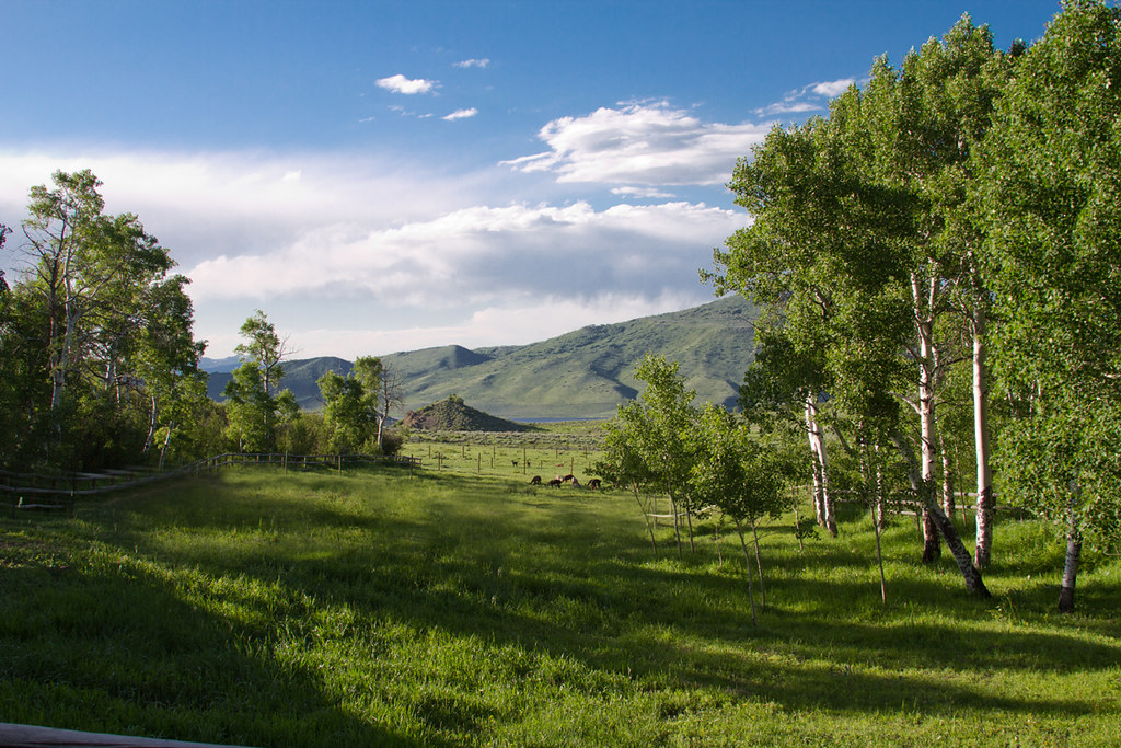 Steamboat ranch for sale, 35 acres