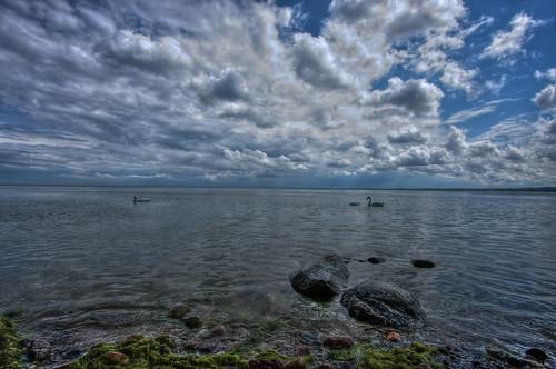sea sky nature clouds canon eos stones poland polska natura baltic swans efs hdr 1022 przyroda marcin morze chmury niebo łabędzie kamienie bałtyckie 40d colorphotoaward gawronski