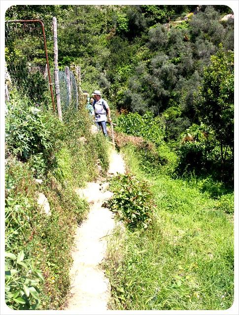 Cinque Terre path
