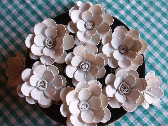 Flores de Caixa de Ovo