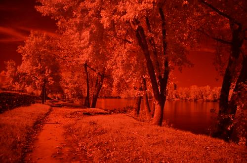 park autumn usa connecticut infrared hartford connecticutriver 06103 charteroaklanding johnjmurphyiii