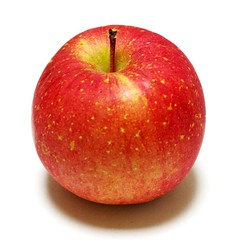 manzana verde(0.0), plant(0.0), produce(0.0), nectarine(0.0), fruit(1.0), food(1.0), apple(1.0),