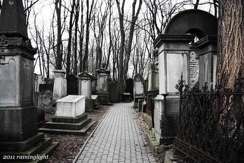 迷路在墓園裡