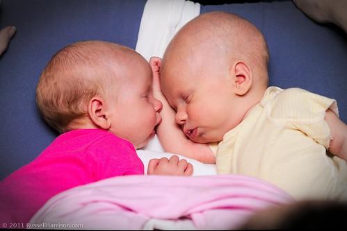Twins 6734