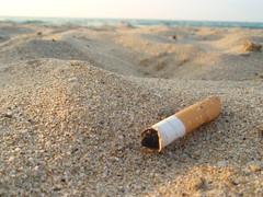 Keep the beaches clean!