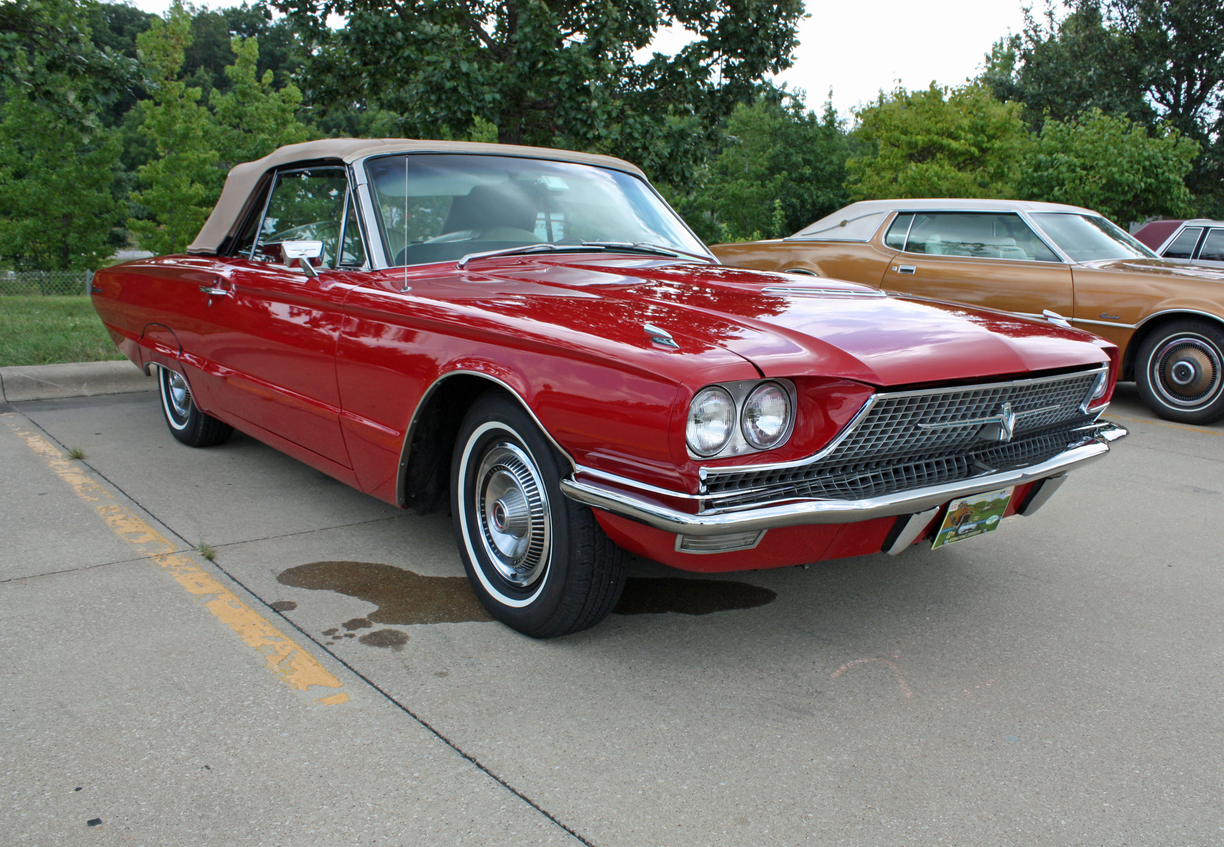 Ford Thunderbird Project Cars For Sale