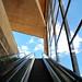 Escalator by Fin Wright