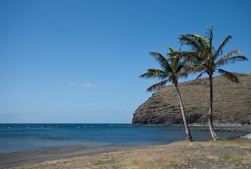 Canarias, quién las conoce repite #Jexvuelveabrillar