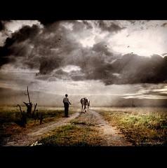 Farmer with Horse and Plug