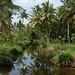 Small photo of Kumarakom