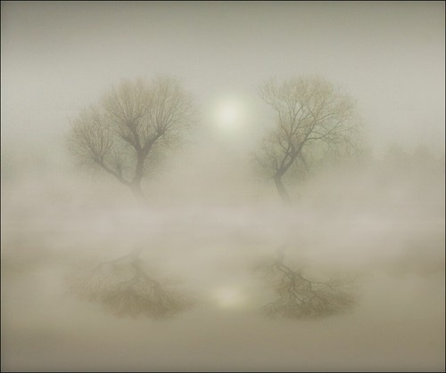 Vanishing into the mists