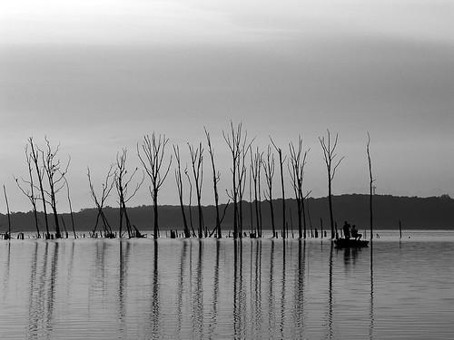 white black water boat reservoir manasquan