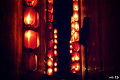 Chengdu 2011