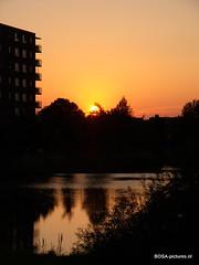 Sun Rice/Sun Set