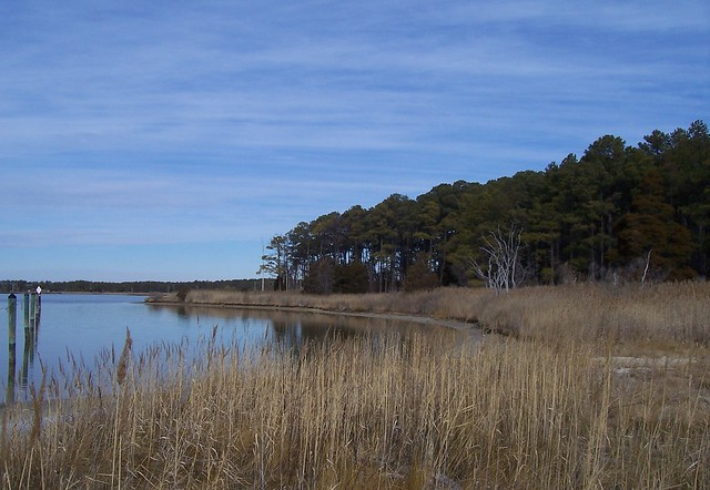 Lake conoy point lookout state park flickr photo sharing for Md fishing report point lookout