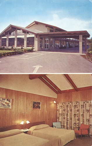 newyork vintage postcard motel albany roomview dualview