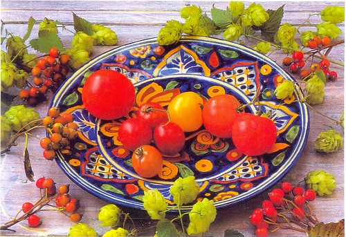 postcard - it 142965 - frutti mediterranei