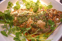 Oven-Steamed Fish with Ginger And Olive Oil