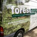 Forest Hogs Van Pictures