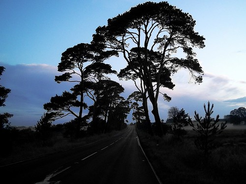 road ireland sophie northern ballycastle scarlette frosses frocess