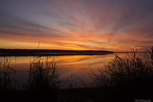 sunrise maine acadia barharbor hadleypoint