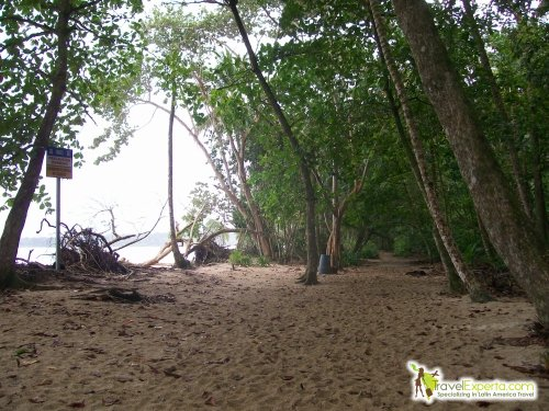5 of the Best National Parks of Costa Rica - cahuita beach