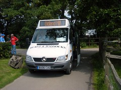 Hurst & Hassocks minibus