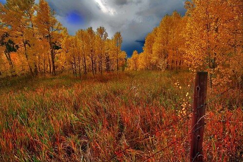 autumn usa fall iso100 colorado raw aspen f11 hdri 10mm centralcity canon450d sigma1020hsmdiii
