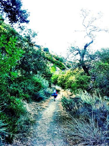 making trail