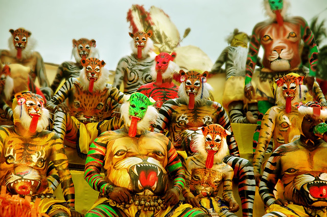 Many Lions and Tigers Here ! Happy Tonguing..If you Can !