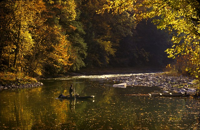 Clinch river in wise county flickr photo sharing for Clinch river fishing