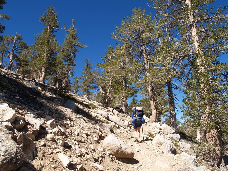 The going gets steeper as we near Limber Pine Bench