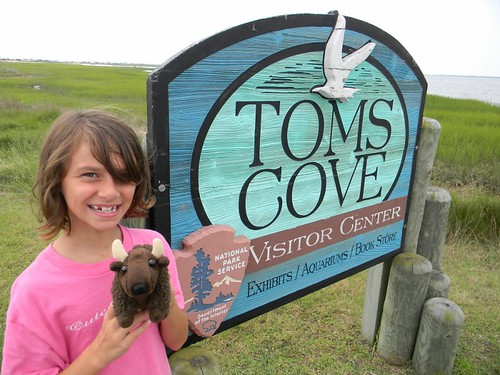 Buddy Bison and friend visiting the visitor's center at Tom's Cove, in Chincoteague National Wildlife, and learning about the local ocean creatures.