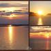♥ My favorites sunsets ☀